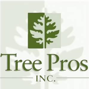 Tree pros image 1 (3)